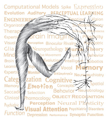 Dancing Neuron Image